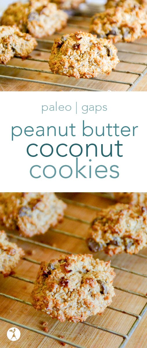 Easy and delicious, these chewy peanut butter coconut cookies are a hit every time I make them! They're naturally gluten-free, and easily paleo and GAPS-friendly, too! #grainfree #eggfree #dairyfree #realfood #veganoption #paleooption #cookies #peanutbutter #coconut