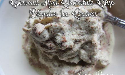 Coconut Mint Chocolate Chip Blender Ice Cream