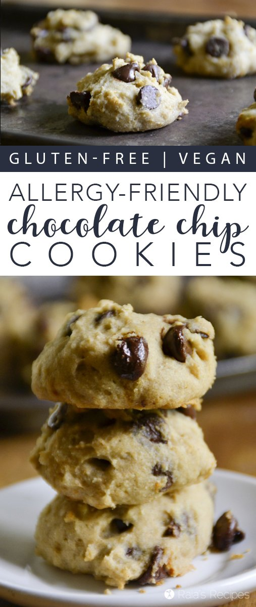 Nothing quite beats a good, easy chocolate chip cookie recipe. These gluten-free, vegan ones sure hit the spot!