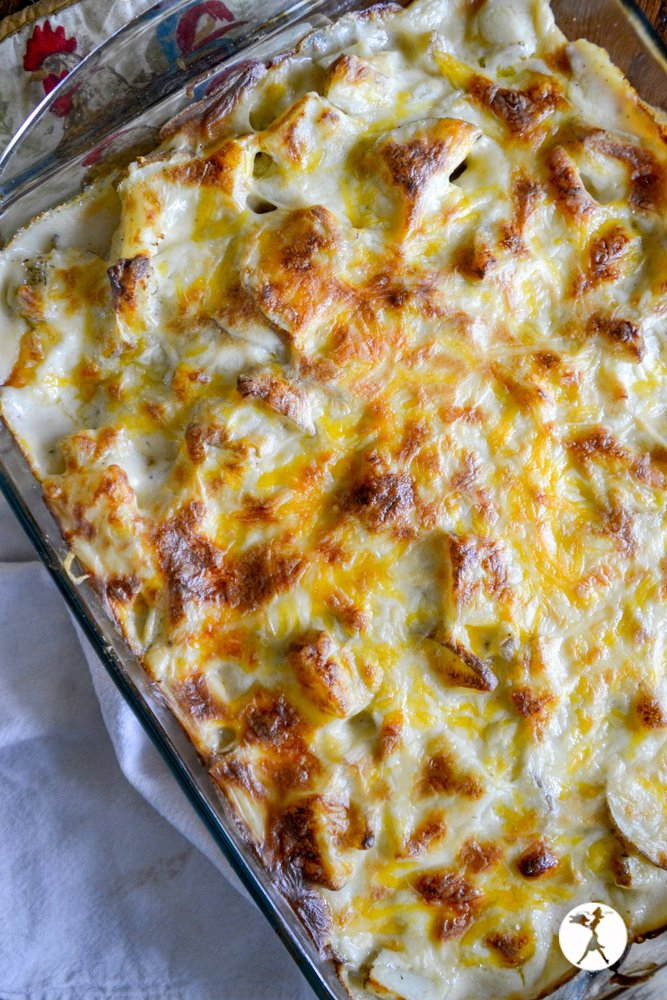 A dish full of grain-free scalloped potatoes. raiasrecipes.com