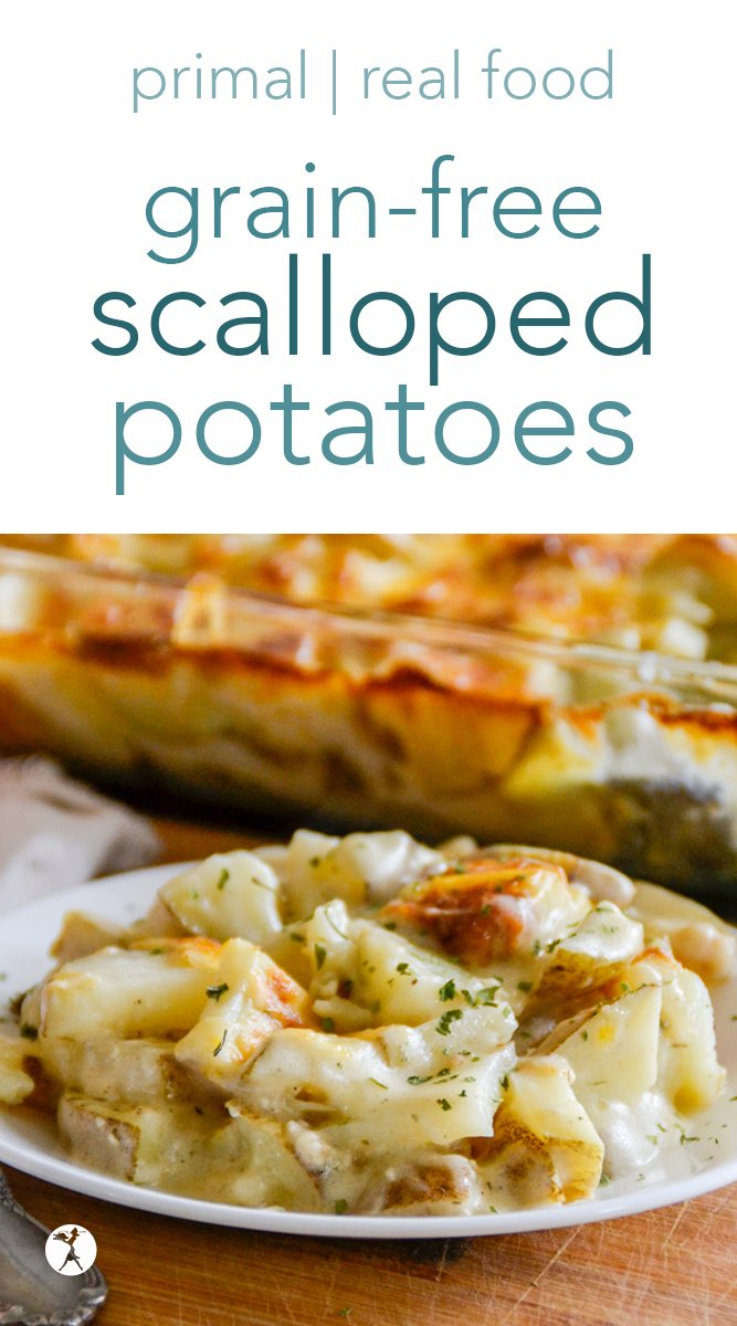 These grain-free scalloped potatoes are a deliciously safe option for those of you who need a sub for traditional scalloped potatoes. They're easy, cheesy, and surprisingly healthy! #primal #grainfree #realfood #glutenfree #eggfree #sugarfree #cassavaflour #potatoes #scallopedpotatoes