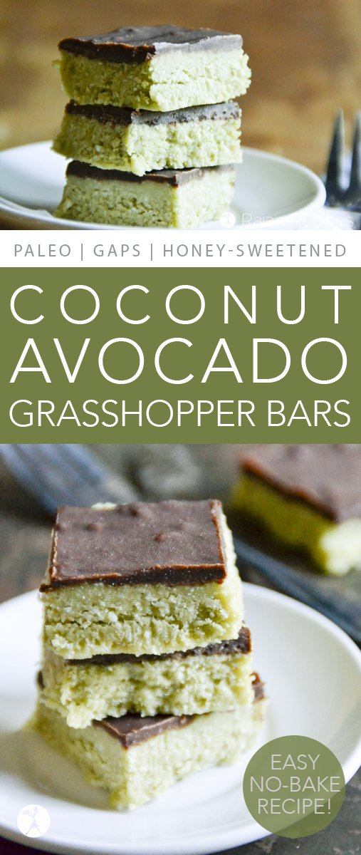 These Coconut & Avocado Grasshopper Bars are allergy-friendly andfull of healthy, real-food deliciousness. And they're completely devoid of grasshoppers... #coconut #avocado #grasshopper #nobake #paleo #glutenfree #dairyfree #peppermint #chocolate #realfood #dessert