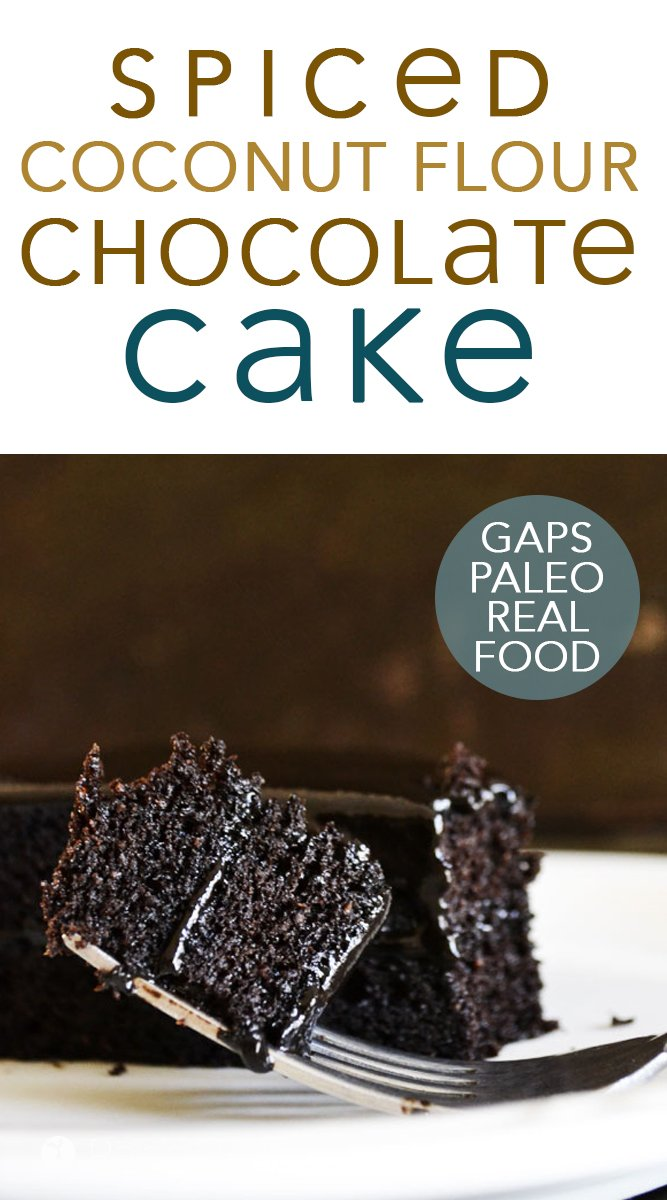 Paleo Spiced Dark Chocolate Cake #chocolate #darkchocolate #paleo #gapsdiet #grainfree #honey #coconutflour #spiced #cake #chocolatecake