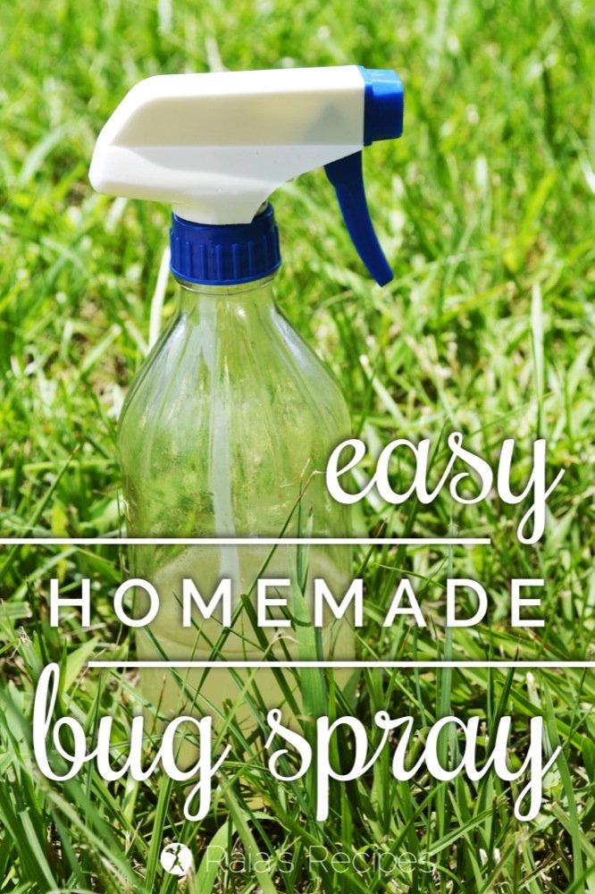 Easy Homemade Bug Spray   RaiasRecipes.com