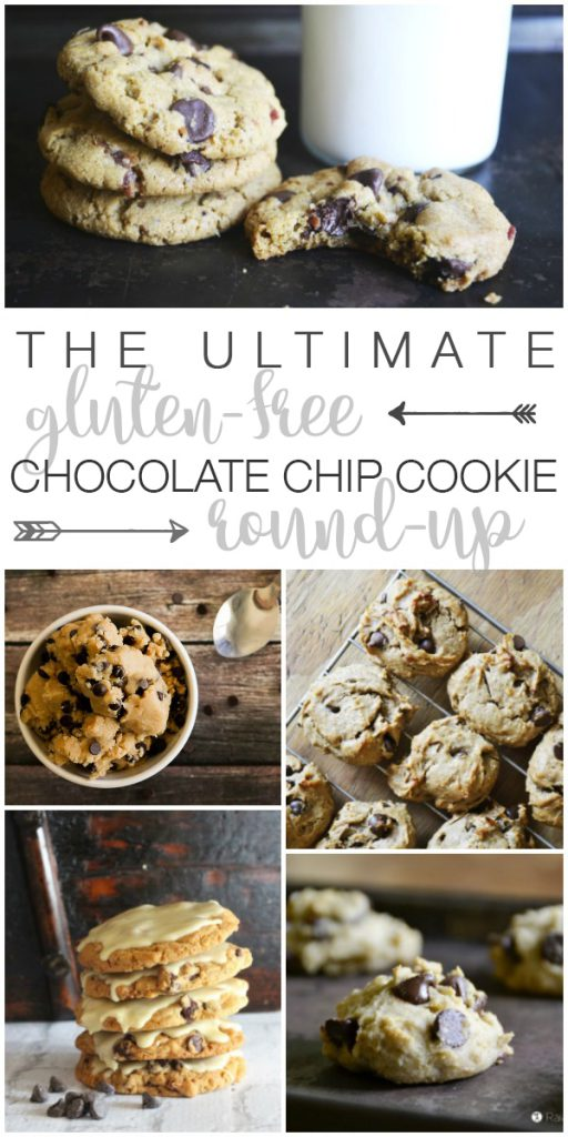 Old fashioned, oatmeal, paleo and more... If you like chocolate chip cookies, The Ultimate Gluten-Free Chocolate Chip Cookie Round-Up has got you covered.