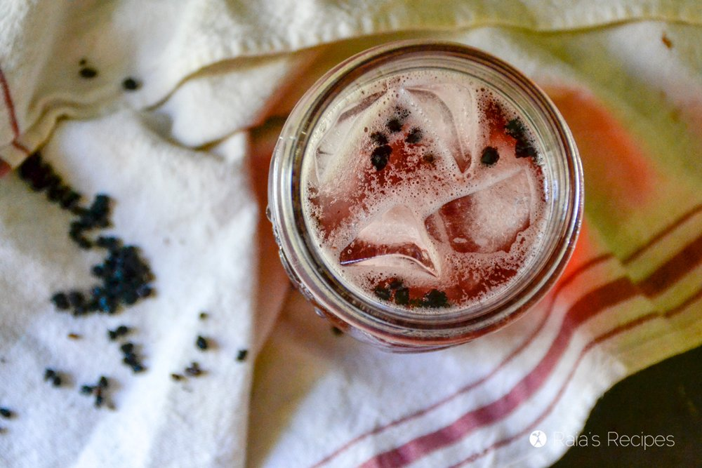 Probiotic Elderberry Water Kefir 7