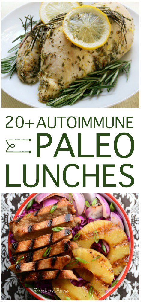 On the lookout for paleo meals to fit the autoimmune protocol restrictions? Here are over 20 delicious AIP lunches to get you started...