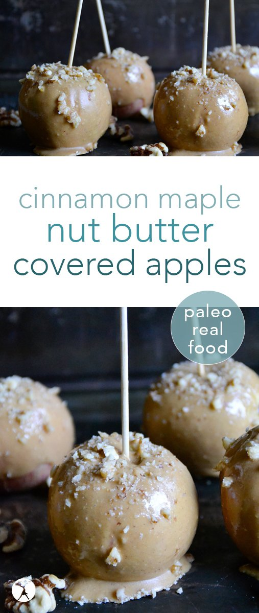 All the flavors of fall converge in these easy, real food cinnamon maple nut butter covered apples. Perfect for kids and adults needed a healthy, delicious paleo treat! #paleo #cinnamon #nutbutter #apples #treats #dessert #healthy