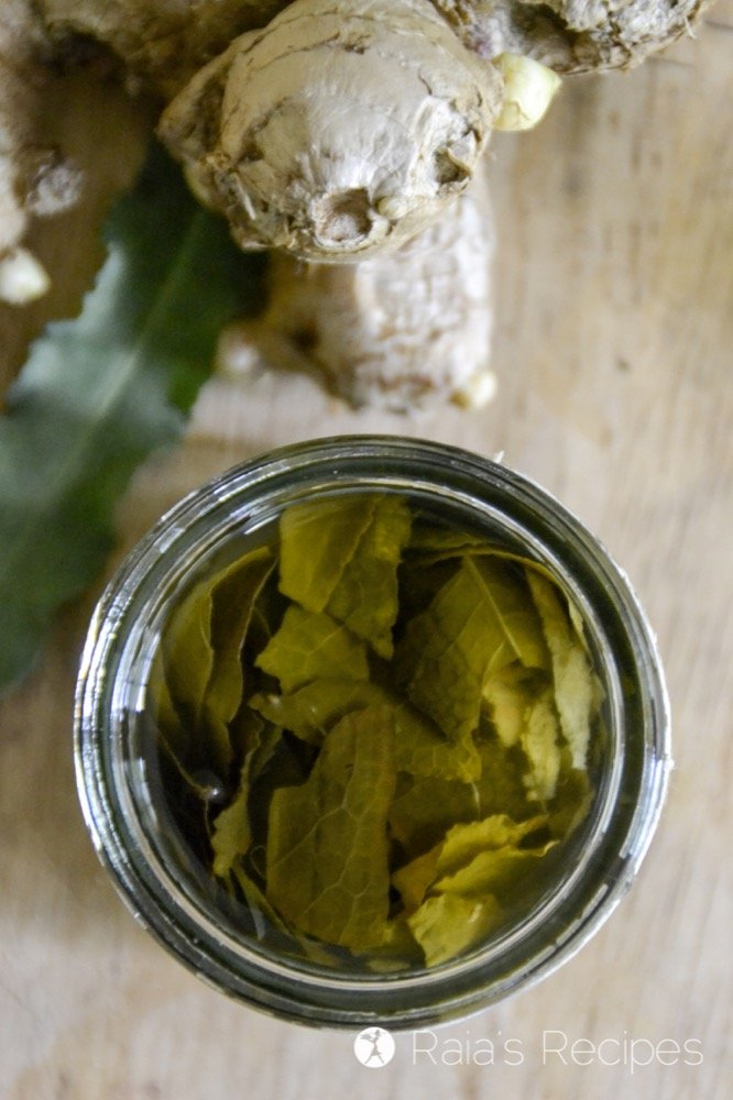Jump start your digestive system and improve your healthy with these DIY Ginger Yellow Dock Digestive Bitters.   RaiasRecipes.com