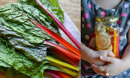 Lacto-Fermented Rainbow Chard