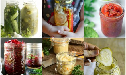 Over 40 Easy Fermented Veggie Recipes