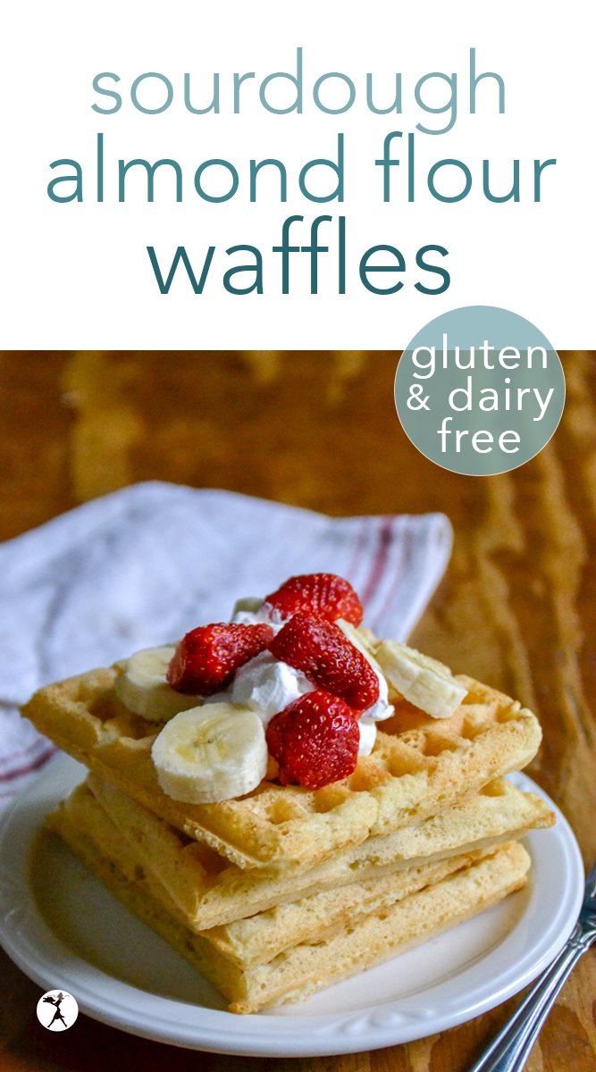 Sourdough almond flour waffles are a perfectly fluffy and delicious meal to enjoy for breakfast! They're gluten-free, dairy-free, sugar-free, and have a grain-free option, as well. #sourdough #almondflour #waffles #glutenfree #breakfast #dairyfree #traditionalfood