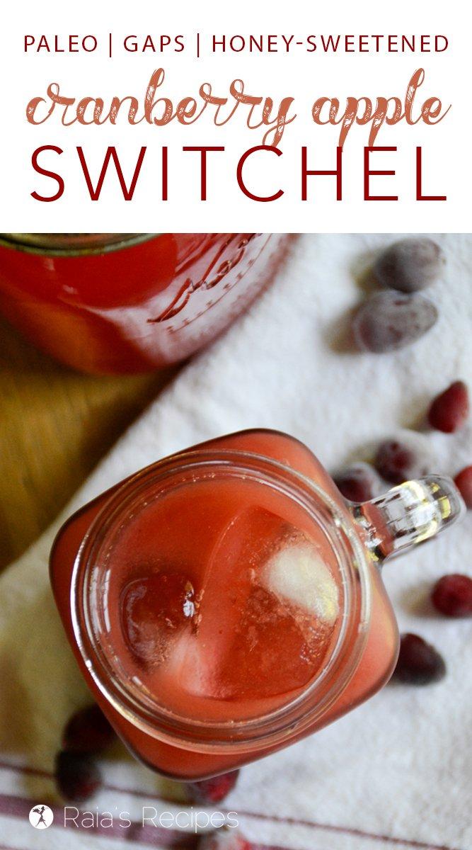 Cranberry Apple Switchel