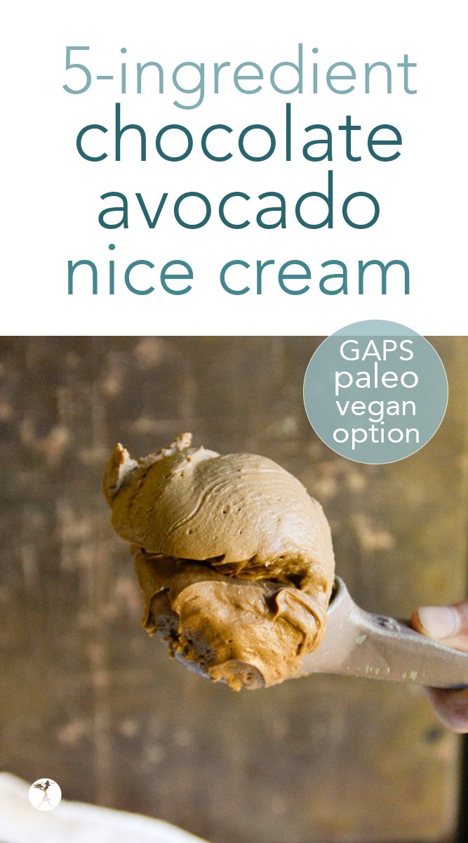 Paleo Chocolate Avocado Nice Cream #chocolate #avocado #nicecream #icecream #paleo #gapsdiet #realfood #glutenfree #vegetarian #dairyfree #eggfree #refinedsugarfree #healthytreats