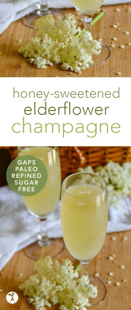 Lightly sweet and deliciously fizzy, this homemade honey-sweetened elderflower champagne is a fun way to increase your summer nutrition! #paleo #glutenfree #gapsdiet #vegetarian #elderberry #elderflower #champagne #homemade #diy #fermented #refinedsugarfree #honey