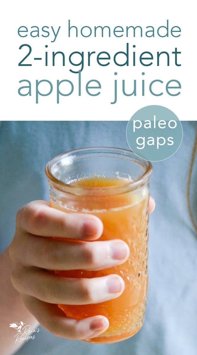 How to Make Apple Juice in the Blender #homemade #applejuice #apples #juice #vegan #paleo #gapsdiet #gapsstage5 #gapsstage6 #gapsintro #DIY #blender