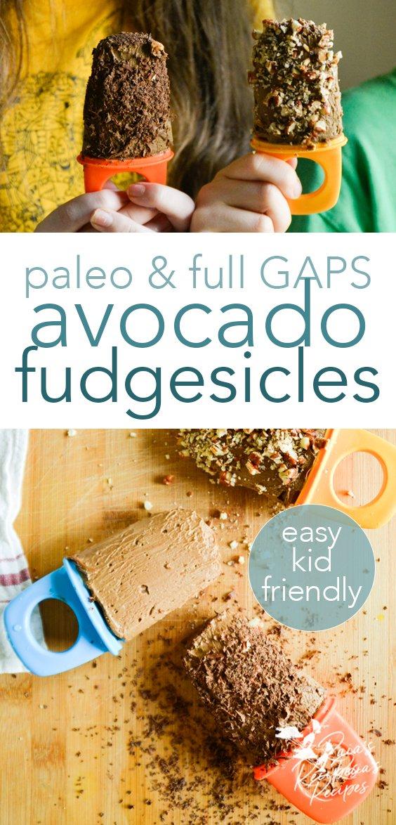 paleo avocado fudgesicles from raiasrecipes.com #avocado #fudgesicles #snacks #paleo #gapsdiet #chocolate #healthy #glutenfree #dairyfree #refinedsugarfree